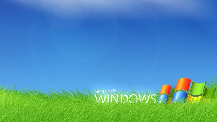 Do you know? Windows XP is still out there!