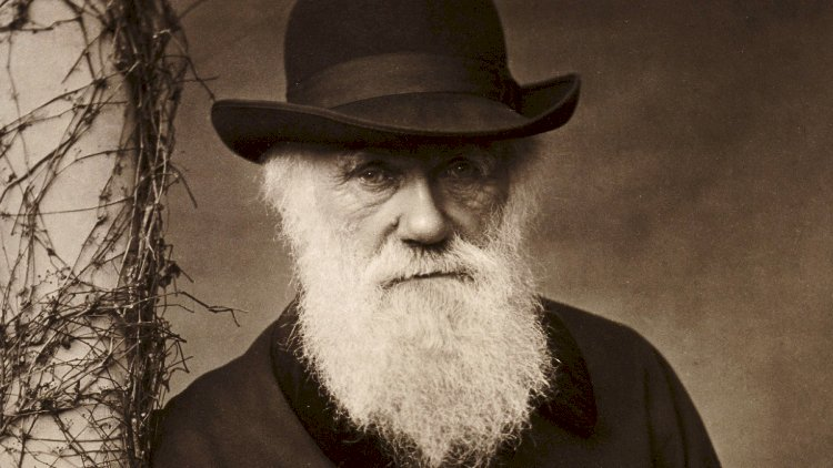 Notebooks of Darwin went missing