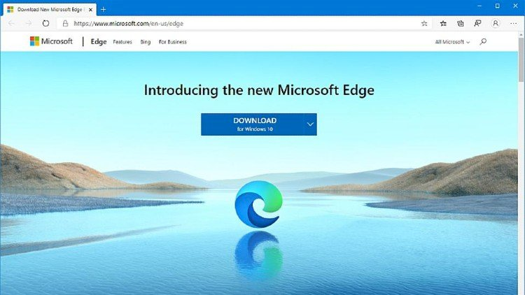 A built-in dictionary to your MS Edge browser pdf reader!